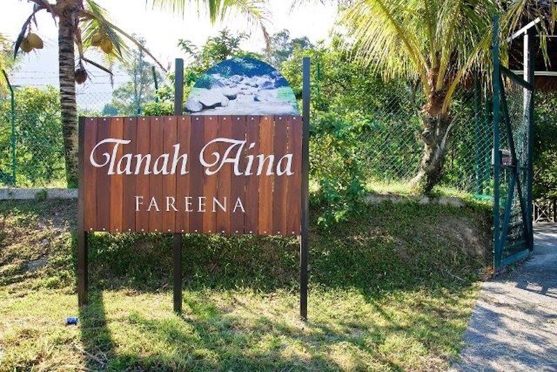 Tanah Aina - Fareena - 8