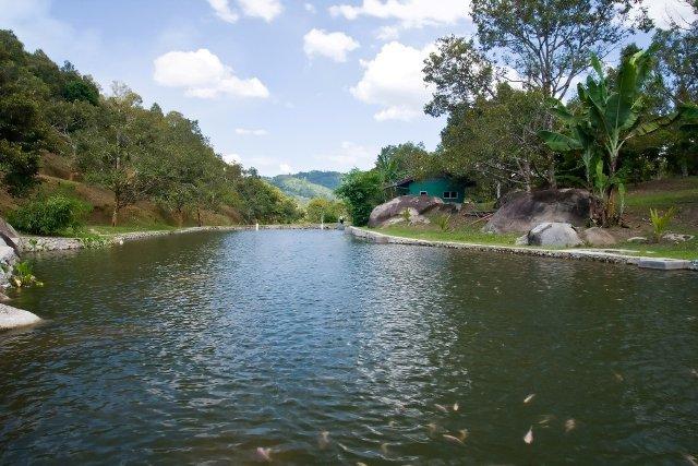 Tanah Aina Resorts - Farouq - 5