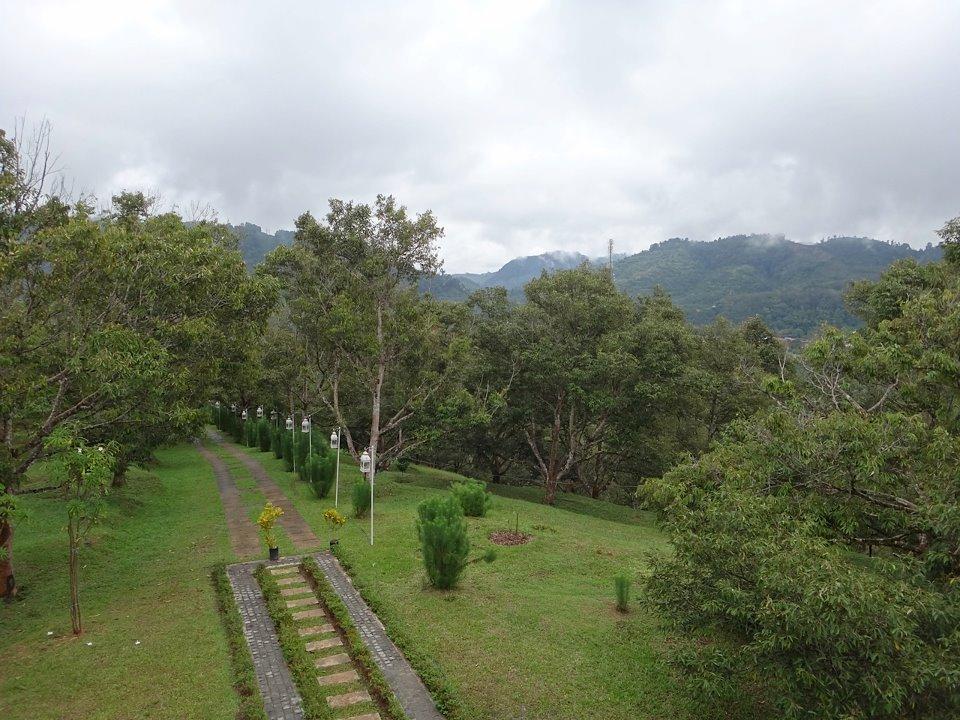 Tanah Aina Resorts - Farouq - 6